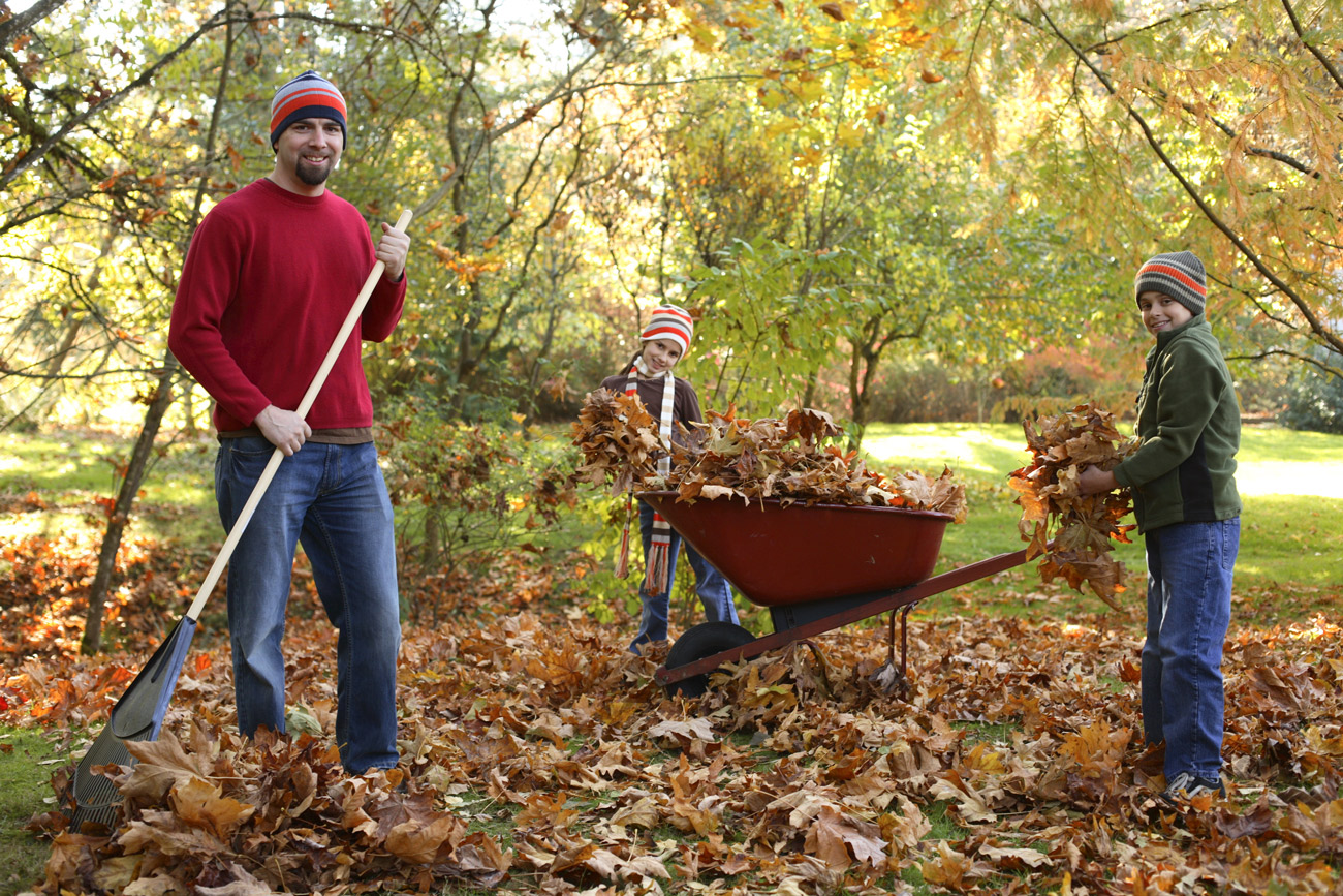 man with two children putting leaves into wheelbarrow